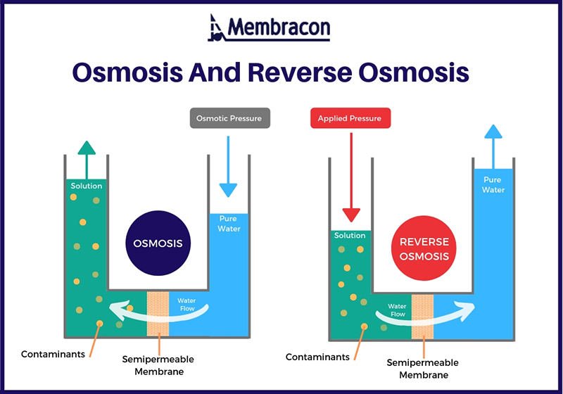 4 Easy Facts About How Does Reverse Osmosis Work? - Kinetico Water Systems Shown