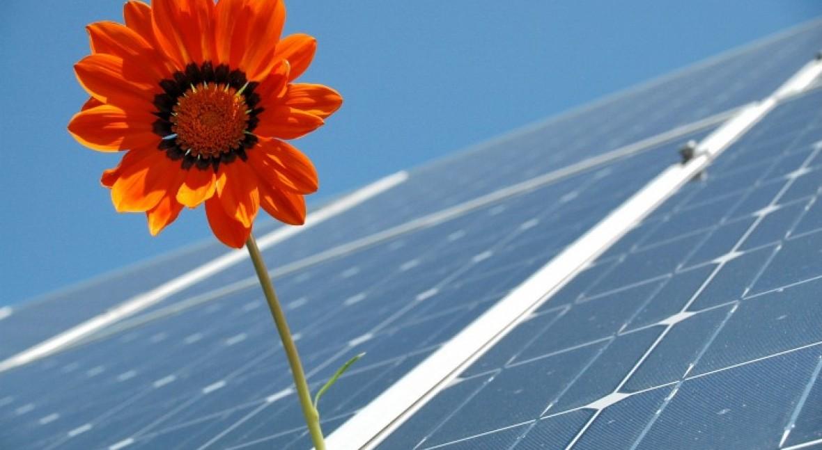 Creating net zero carbon future