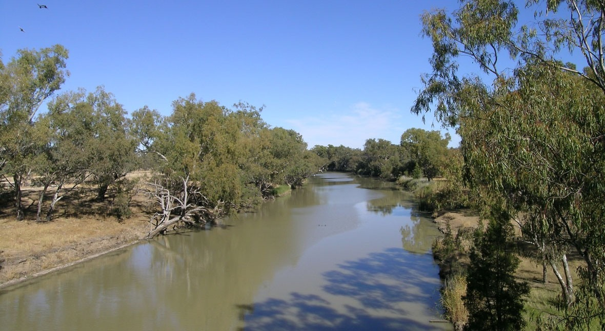 NSW's water plan is 'not working' but we can save the Barwon-Darling