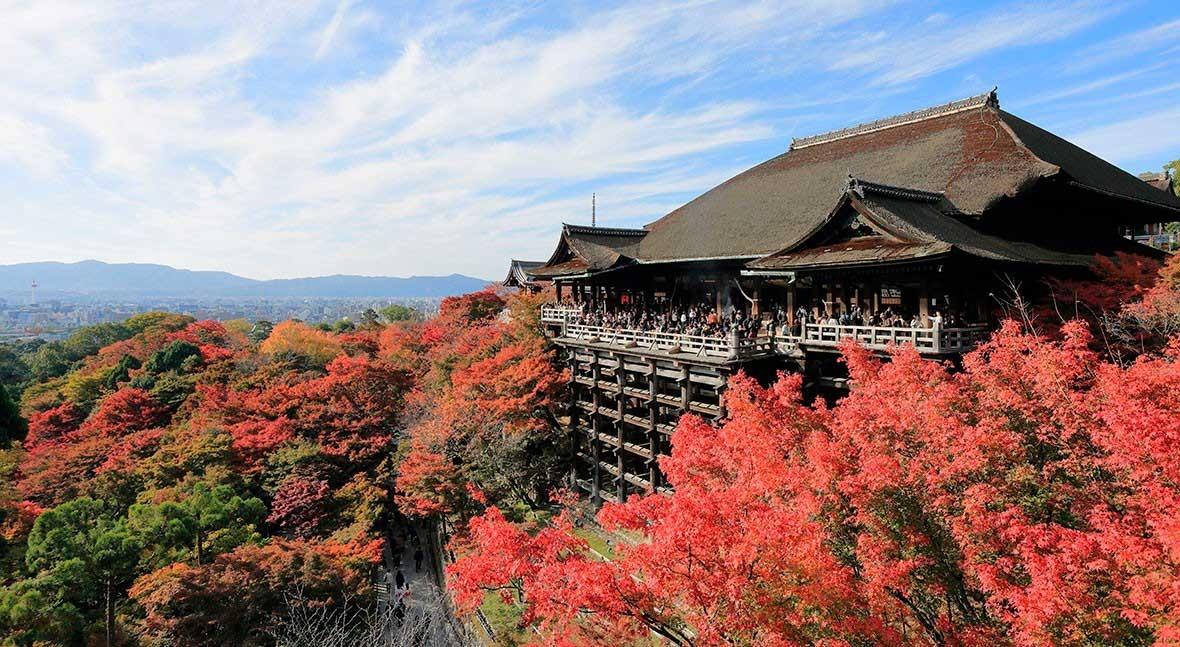 Kiyomizudera Temple: Japan's pure water