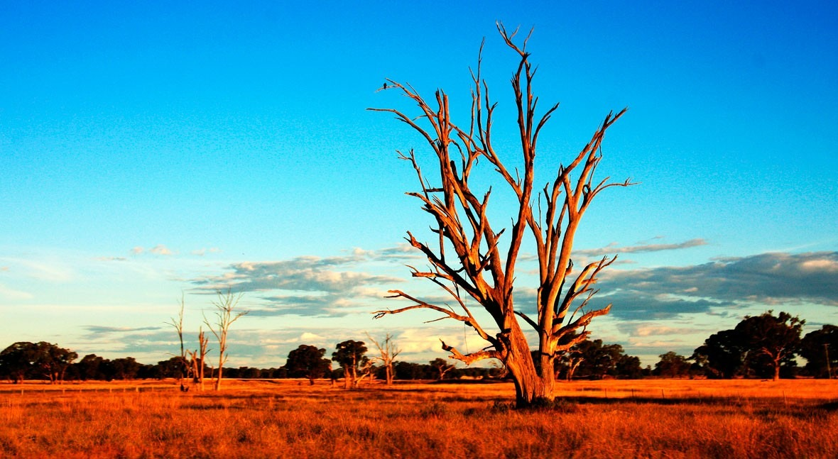 An Australian drought policy should be an easy, bipartisan fix. why has it taken long?