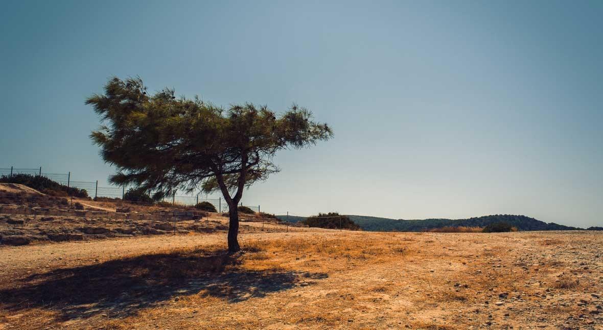 Tackling drought through good water management