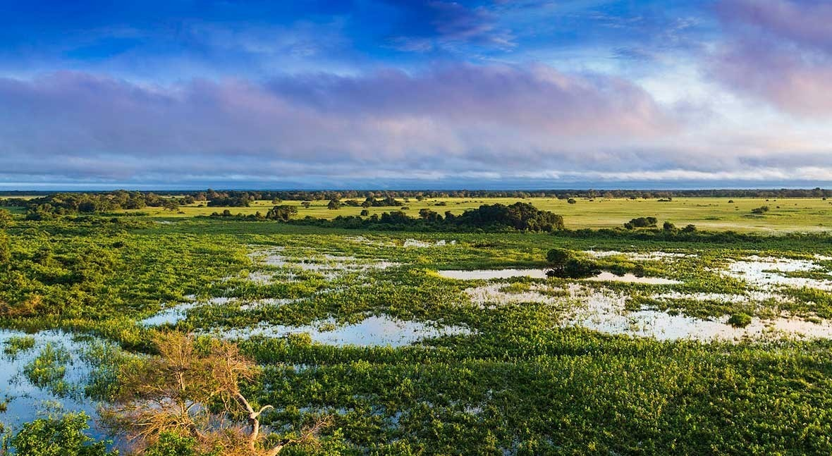 The 10 largest wetlands in the world