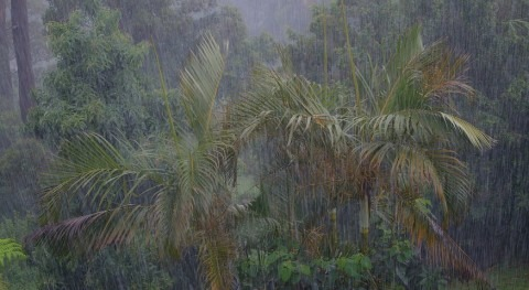 Climate change is making Indian monsoon seasons more chaotic