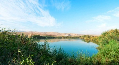 Oman designates Al Ansab Wetland