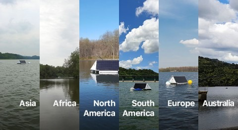 Algae management around the world