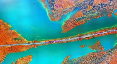 EPA releases Cyanobacteria Assessment Network (CyAN) web tool to help monitor water quality