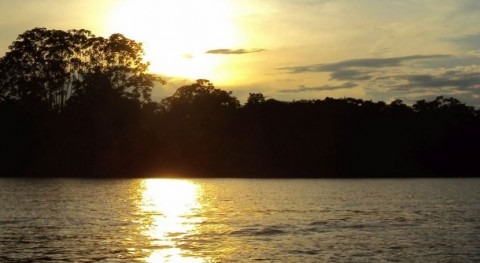 How long is the Amazon river?