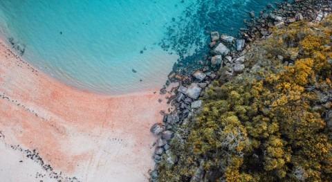 Australia's pristine beaches have poo problem