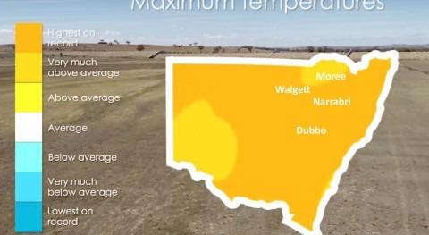 Australia must declare water emergency, says expert