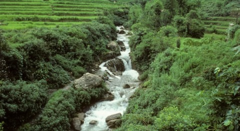 FAO publication on remote sensing for water productivity