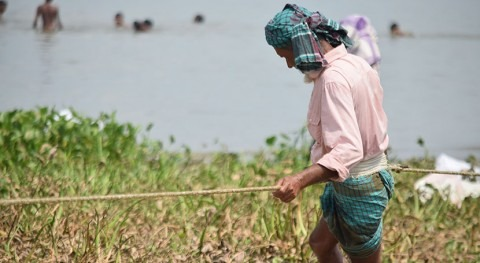World Bank helps Bangladesh improve irrigation-based agricultural productivity