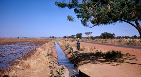 Big irrigation projects in Africa have failed to deliver. What's needednext