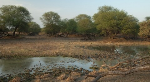 India's pond restoration projects 'could boost water security'