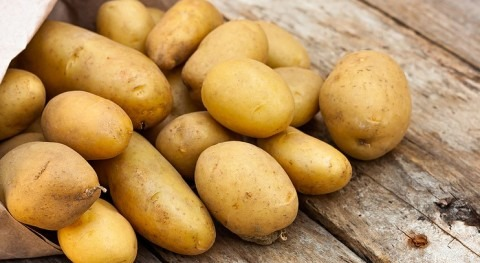 Grants available to help potato growers optimise water management