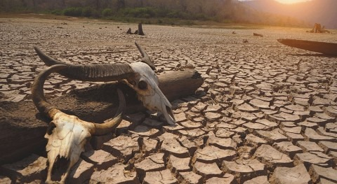 Numbers facing extreme drought to double by century end?