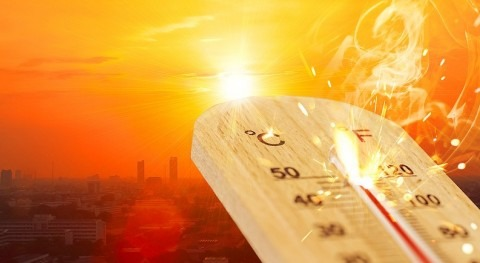 UK 'unprepared' for heatwaves and rising summer temperatures