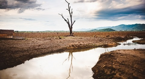 3 unconventional resources to tackle the water crisis
