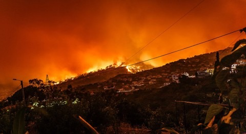 How heatwaves and drought combine to produce the perfect firestorm