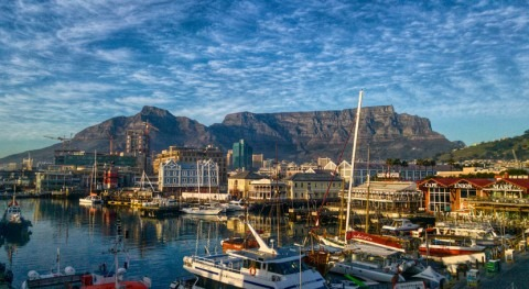 Cape Town could remove alien trees to increase water supply
