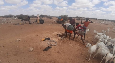 Looming drought in Somalia