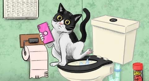 I've always wondered: can I flush cat poo down the toilet?