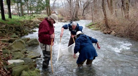 Citizen scientists may be an untapped resource for water quality improvement