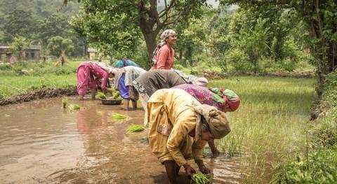 Climate change will hit women in hot spots hardest