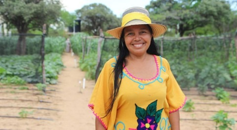 Drip irrigation, sun and solar do 'God's work' and Colombian desert blooms