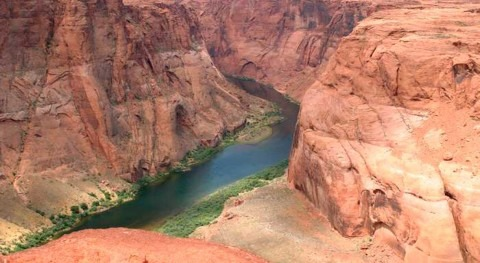Colorado River flow dwindles as warming-driven loss of reflective snow energizes evaporation