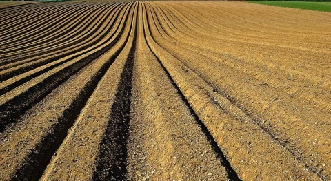 WRI and Cargill partner on water management tools to advance sustainable agriculture