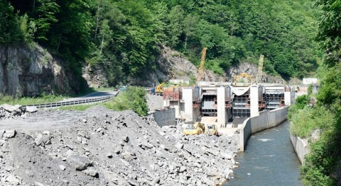 Europe: Small hydropower plants do more harm than good, study finds
