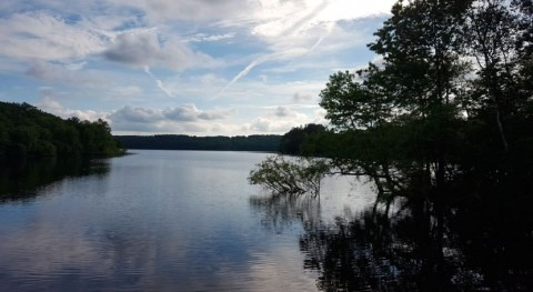 Maine Water seeks approval for Connecticut Water-SJW Group merger