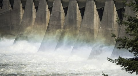 Planned hydropower dams threaten fish in the tropics