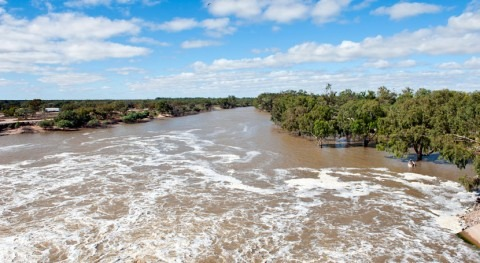 Murray-Darling report shows public authorities must take climate change risk seriously