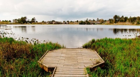 World Wetland Day 2021: Wetlands and Water