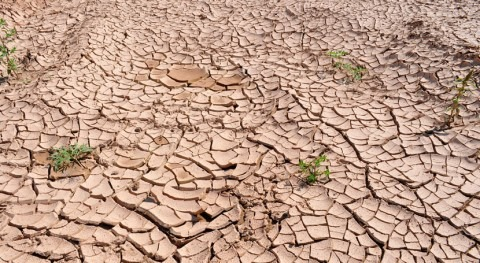 One drought can amplify or cause another