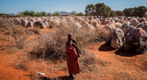 Somalia: US$710M to reach 4.5M people hit by drought