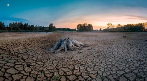 We cannot afford to wait, adapting to the effects of climate change