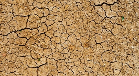 COVID-19 compounding long-term drought effects in southeast Asia