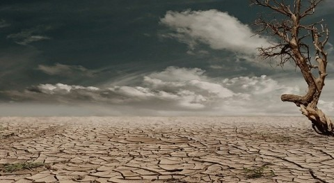 What does drought mean?