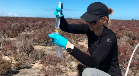 New method to detect impact of sea level rise