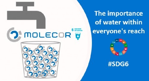 The importance of accessibility to water for Molecor