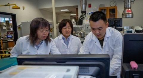 Engineers produce water-saving crop irrigation sensor
