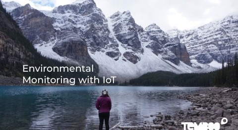 Why environmental monitoring with IoT could solve the climate crisis