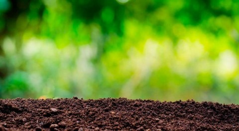 Global soil erosion projected to be worse than previously expected