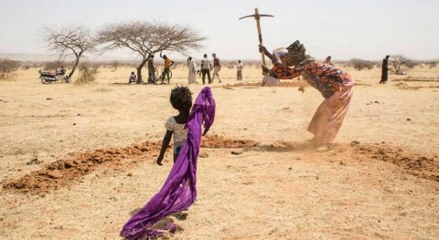 More than two billion hectares of once productive land is now degraded