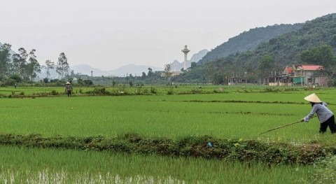 New FAO Water Report on real water savings with crop water productivity interventions