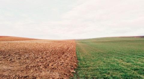 Researchers develop new realtime soil nitrate sensor