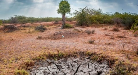 Five unusual technologies for harvesting water in dry areas